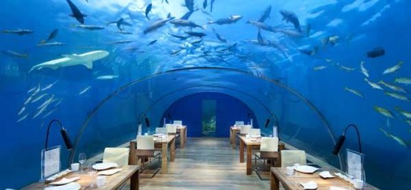 maldyvai ari atolas